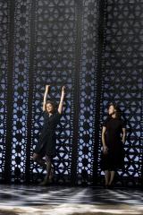 Théâtre, Comédie-Française, Garcia Lorca