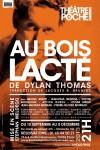 Théâtre, Poche-Montparnasse, Dylan, Meldegg